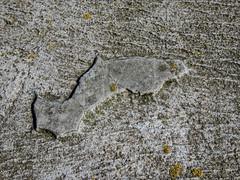 The dolphin (mona_dee) Tags: delfin dolphin stein stone