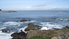 IMG_6128 (cheryl's pix) Tags: california pacificgrove pacificgroveca
