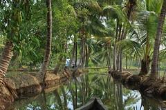 (Simona Simonkey) Tags: india kollam quilon backwaters boat kerala