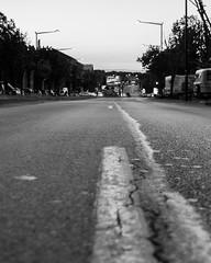 Rue 20_04_2017 (6 sur 34) (Jérôme Loche) Tags: photographie de rue life bordeaux france gironde vie noir et blanc couleur nb aquitaine personne inconnue femme homme jeune couché soliel bus passage piétons fleur rembarde barrière arbre pigeon moto velo poubelle déchets tramway rails nuit jour peintre envol route scooter pomme ruine portrait flou