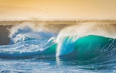 Sunrise at The Wedge (meeyak) Tags: waves bigwaves sports surf surfing bodyboard blue sunrise warm spring thewedge newportbeach oc orangecounty socal westcoast california water ocean beach telephoto nikon d800 70200mm aqua outdoors travel vacation usa