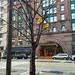 half-wet tree in front of the Hyatt Regency - Cleveland