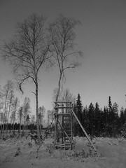 All along the watchtower (jondewi52) Tags: black blackandwhite building frozen forest ice jämtland landscape monochrome nature norrland outdoor outdoors snow sky tree trees winter white no photoshop filter