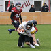"26. März 2017_Sen-067.jpg<br /><span style=""font-size:0.8em;"">Bern Grizzlies @ Calanda Broncos 26.03.2017 Stadion Ringstrasse, Chur<br /><br />© <a href=""http://www.popcornphotography.ch"" rel=""nofollow"">popcorn photography</a> by Stefan Rutschmann</span> • <a style=""font-size:0.8em;"" href=""http://www.flickr.com/photos/61009887@N04/33645714706/"" target=""_blank"">View on Flickr</a>"