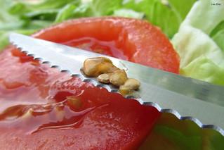 A Slice Of Tomato