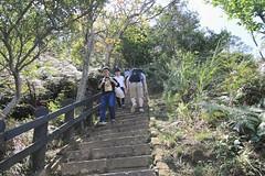 IMG_1336 (少東 兄) Tags: 爬山 福星 四獸山 虎山 獅山 豹山 象山 台北101