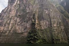 Tuxtla Canyon del Sumidero Christmas Tree Falls-2