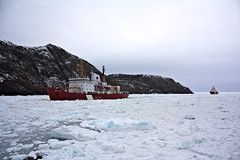 The Henry Larsen icebreaker leading the the Leonard J Cowley through the sea ice into St. Johns harbour (alpeace89) Tags: sea ice winter april newfoundland canada cold weather boats icebreaker harbour signalhill signal hill