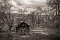 The-Shed-4.25 (desouto) Tags: woods fores leave lake sky morning shed trees clouds green red hdr landscape