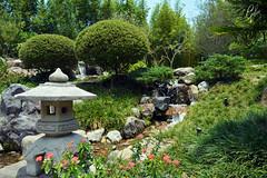 JARDINES DE MEXICO (fco_galan34) Tags: jardines mexico naturaleza natural morelos paisajismo ecosistemas flores colores plantas arboles japon japones
