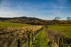 The Long Narrow Walk (Brian Travelling) Tags: grass blue green fence scotland northayrshire landscape bluesky