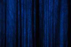 Kangastuksia II (Olli Tasso) Tags: mirage kangastus art abstract trees forest longexposure dark spooky aavemainen blue sininen trunk kangasala suomi finland landscape maisema nature luonto outdoors pitkävalotus metsä