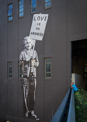 ...at least it should be! (USpecks_Photography) Tags: streetart manhattan newyorkcity nyc highlinepark highline einstein streetphotography