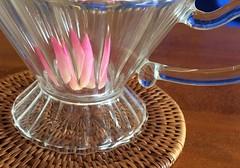 herbal tea (Hayashina) Tags: japan ishigakiisland colour cup tea herb
