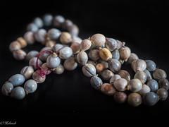 Macro Mondays : seeds of Namibie ,seeds  necklace (Hélène Baudart) Tags: macromondays seeds graines macro collier necklace
