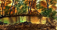 REFLECTIONS in AUTUMN (Lani Elliott) Tags: nature scene view bush autumn reflections reflection trees forest art watercolour gouache mixedmedia reflectionsinautumn