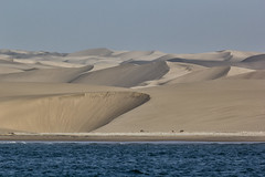 Skeleton coast, Namibia