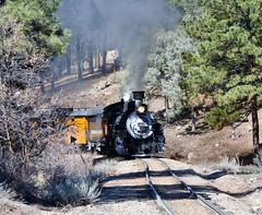 North of Durango, CO (std70040) Tags: durangosilverton dsngrr denverriogrande 482 mikado steam steamlocomotive steamengine steamtrain train railway railroad