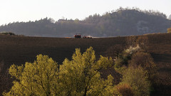 On the top (raffaella.rinaldi) Tags: nature fields countryside italy landscape straight line tractor plow brown working soil