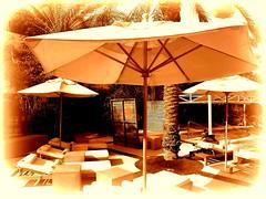 asunspot (milomingo) Tags: monochromatic outdoor umbrella chaiselounge outdoorfurniture photoborder saguarohotel scottsdale arizona southwest relaxation poolside light shadow contrast a~i~a