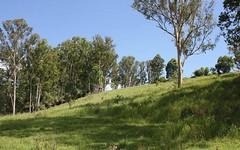112 Homeleigh Road, Kyogle NSW