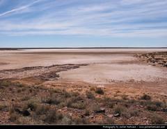 Outback, South Australia, Australia (JH_1982) Tags: desert south australia outback australien australie austrlia  meridionale australi  meridional    australiemridionale  mridionale