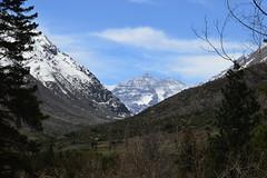 Camino a la Cumbre (Carlos Garca Soto) Tags: chile snow mountains nieve glacier andes glaciar montaas
