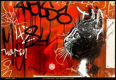 London 2014 - Bricklane: Artist C215 (pmbvw) Tags: world street england urban streetart get london art colors wall writing painting artwork mural europa europe paint artist britain kunst tag united great kingdom tags spray peinture urbanart painter gb writer legal spraycan 2014 grossbritannien c215 grosbritannien pmbvw grosbritannienundnordirland worldgetcolors grobritannienundnordirland