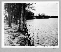 photo album 09264-01-ph010 (Olmsted Archives, Frederick Law Olmsted NHS, NPS) Tags: parks parvin