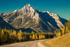 Fall colors in the mountains (JoLoLog) Tags: road mountain canada alberta rockymountains raya lorien kananaskiscountry canadianrockies highway40 canon6d