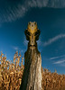 Totem (Tau Zero) Tags: tree cornfield harvest bluesky totem stump groot digitalmirror