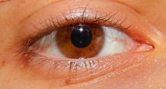 Brown (Cark Flowers) Tags: espaa eye ojo spain nikon now cceres