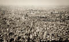 Tokyo Views 11 (aelena) Tags: japan tokyo tokyotower japn