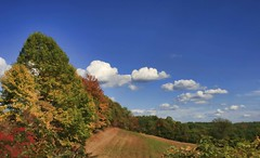 It's coming. (~ Liberty Images) Tags: autumn trees ohio sky fall field farm fallcolors libertyimages