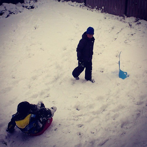 First backyard sledding of #yxy #Yukon #fall #YT #YKstorm