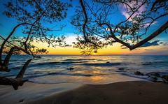 Rincon sunset October 2014 (Louis O'Halloran) Tags: sunset color beach nature atardecer puertorico branches playa colores rincon tropicalsunset atardecertropical