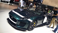 Jaguar Projetc 7