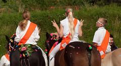 v (Els Millenaar) Tags: horses holland dutch nederland folklore zeeland ringrijden oostsouburg paardensport zrv farmersjoust zeeuwseringrijdersvereniging