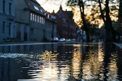 2014-10-05-Greifswald-20141005-175053-i197-p0052-ILCE-6000-46_mm-.jpg