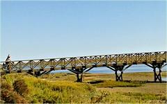Hiiii!!!! (L C L) Tags: hello travel viaje bridge summer portugal bike puente n bicicleta september septiembre journey pasarela verano hi algarve marisma hola viajar 2014 lcl quintadellago loretocantero