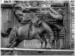 rodeo3 (cowsandgirl71) Tags: bw france festival cheval cowboy noiretblanc indre nb panasonic american tours et 2014 loir photomatix rodo fz200