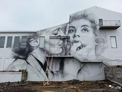 Guido Van Helten...Reykjavik, Iceland... (colourourcity) Tags: streetart graffiti reykjavik colourourcityiceland colourourcityreykjavik art iceland