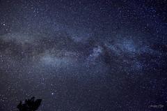 Another Milky Way (jordanwchin) Tags: camera trees camp sky color broken night stars utah nikon desert space south canyon unknown universe saintgeorge milkyway canyoneering