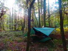 Sunrise over the camp (fishfish_01) Tags: camp forest woods survival bushcraft