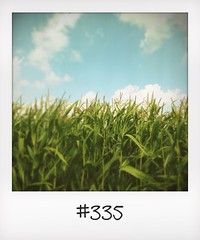"#DailyPolaroid of 29-8-14 #335 • <a style=""font-size:0.8em;"" href=""http://www.flickr.com/photos/47939785@N05/15331696045/"" target=""_blank"">View on Flickr</a>"
