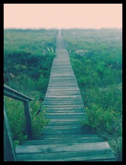 The Long And Winding (and Cockeyed) Boardwalk (The One-Eyed King) Tags: morning sea summer usa color beach sc nature beautiful beauty fog america sunrise landscape island photography morninglight sand flickr alone moody photographer natural ngc calming southcarolina peaceful naturallight calm atlantic september east southern trail simplicity mysterious summertime uncertainfuture dread southeast naturalbeauty simple solitary desolate beaufort saltwater amazingcolors subtle isolate iphone naturephotography lowcountry naturallighting facingeast beaufortsc amazingcolor beautifulphotograph intensesadness iphoneography