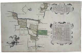 Attilio Arrigoni, Mappa dei beni di Nesporedo appartenenti al Luogo Pio della Misericordia, 1683, ALPE, Cabrei, 5