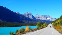 Highway 93 Banff National Park (nigginic) Tags: bear park lake black mountains jasper rocky canyon louise national bow banff gondola moraine revelstoke johnston caribous