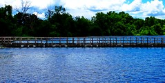 The dock pano (SCOTTS WORLD) Tags: old trees shadow summer sky sunlight nature water clouds digital rural fun dock midwest pov decay michigan country perspective bluewater july adventure orion weathered dilapidated 248 2014 oaklandcounty olympusepm1