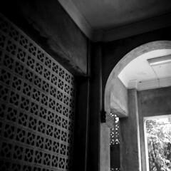 img316 (阿智) Tags: bw 120 film darkroom taiwan d76 黑白 fujiacros100 底片 暗房 沖片 rolleiflex35a